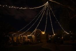 The magic Voelkel backyard