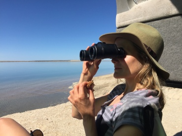 scouting for whales