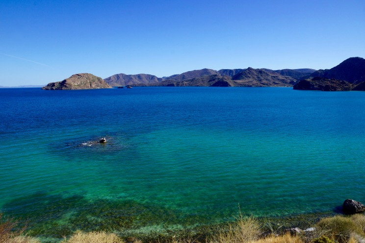 Bahía de Concepción in the Sea of Cortez: Snorkel heaven, surf hell